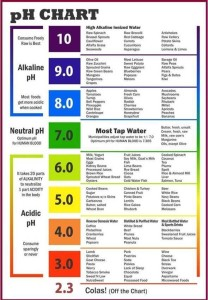 Balances-your-body's pH-ecana